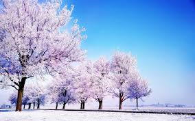 winter mac backgrounds winter nature wallpapers 76 background pictures