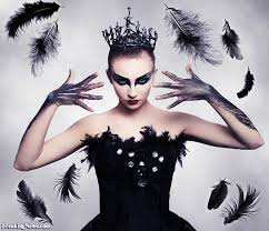 black swan losing her feathers