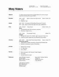 Resume Template For A Highschool Student 2017 Resume Template High ...