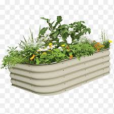 flower garden flowerpot raised bed