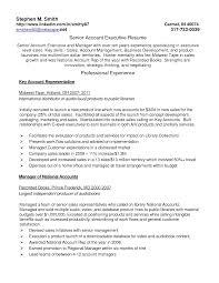 fashion s account executive resume