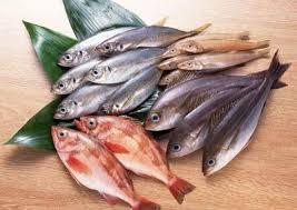 Доклад о рыбах класс окружающий мир Щука карась окунь  Доклад о рыбах 2 класс окружающий мир
