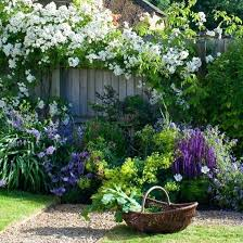 best garden plants. Garden Plant Ideas Gorgeous Plants For Gardens Best The Small Front .