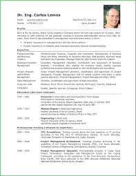 Template Cv English Example Word Document Resume Free