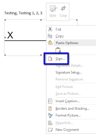 How To Make A Certificate In Word 2010 Create A Signature Microsoft Office Documents Digicert Com
