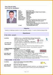 Sample Resume In Doc Format 100 Sample Curriculum Vitae Layout