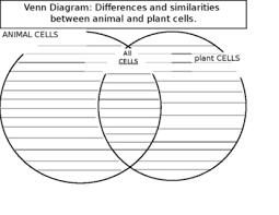 Venn Diagram Plant Cell And Animal Cell Animal And Plant Cells Venn Teaching Resources Teachers Pay Teachers