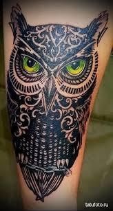 Sova Tetování Pro Muže Na Rameni Co Znamená Tetování Sovy