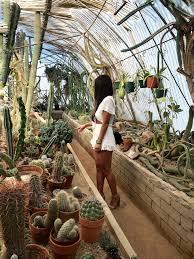 what to do in palm springs moorten botanical garden palm springs travel guide