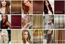 Remy Colour Chart Russian Remy Hair Extensions Colour Chart Exclusive Hair