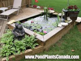 build a garden. Build A Garden Pond Right Off Your Patio Deck - Water Looks Amazing! T
