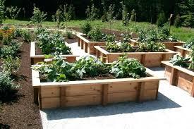 raised vegetable garden plans raised vegetable garden plans example