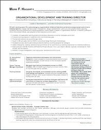 Google Drive Resume Awesome Google Docs Resume Simple Resume Examples For Jobs
