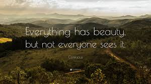 Everything Has Beauty Quote