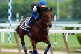 2015 Belmont Stakes Chart 2015 Belmont Stakes Pace Preview American Pharoahs Race To