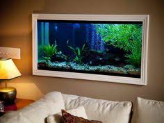 Home Accessories : Perfect Fish Tanks Pics For Your House On The Wall  Perfect Fish Tanks Pics for Your House Best Fish Tanks 20 Gallon Fish Tank  ...