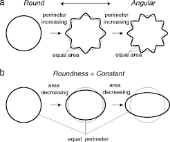 Roundness Chart New Parameter Of Roundness R Circularity Corrected By
