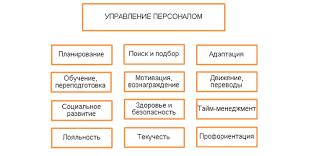 Информационная система управления персоналом