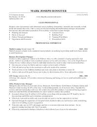 Professional Statement Examples Unique Cv Personal Statement Examples Retail Jobs Opening Resume For Essay