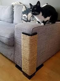 Best 25 Cat scratch furniture ideas on Pinterest