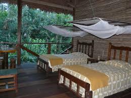 Rainforest Bedroom Braving The Amazon Jungle The Inside Track