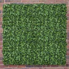 artificial ivy wall artificial ivy wall covering uk daily mail artificial ivy wall