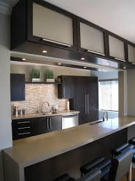 Contemporary Kitchen Cabinets  Contemporary Cabinets Kitchen Contemporary Kitchen Interiors