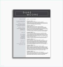 Google Spreadsheet Dashboard And 43 Google Docs Resume Template Free