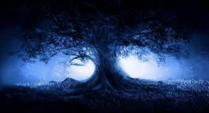 hd quality wallpapers big images for