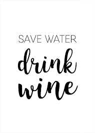 Wine Quotes Fascinating Save Water Drink Wine Funny Printable Wall Art Funny Wine Quote