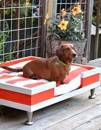best outdoor dog bed full image for best elevated dog bed ideas on raised dog beds best outdoor dog bed