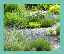 herb garden ideas garden design