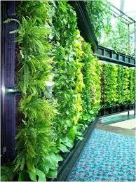 Brilliant Living Wall DIY Vertical Garden 1000 Ideas About Living Wall  Planter On Pinterest Garden Wall
