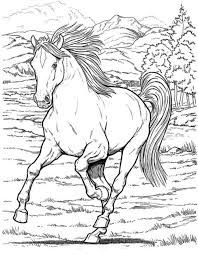 Free Realistic Wild Horse Coloring Pages To Print Animal Coloring