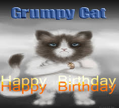 grumpy cat i had a birthday once. Unique Grumpy Grumpy Cat Happy Birthday Intended I Had A Birthday Once