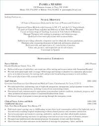 Recruiter Resume Sample Luxury Example A Professional Resume Elegant