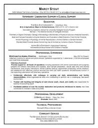 resume templates for college students college resume template you student  resume longbeachnursingschool - Australian Resume Format
