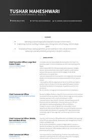 Chief Executive Officer Resume Samples Visualcv Resume Samples