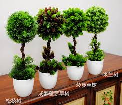 Decorations  House Decorations Plants And Flowers Home Decor Home Decor Trees
