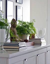 plants feng shui home layout plants. Feng Shui Rules - Tips For Designing A Home Plants Layout N