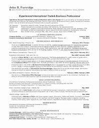 Compliance Officer Sample Resume Impressive Chief Compliance Officer Resume Sample Best Of Pliance Resume