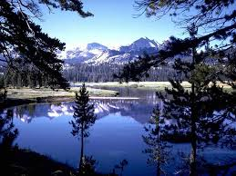 لكل محبي صور الطبيعة  اكبر تجميع لصور الطبيعة Images?q=tbn:ANd9GcTegJCdD-F3_uI8QG79HE1VU9sM1T1kgTPIJ3yW9hRXSj6VwGky