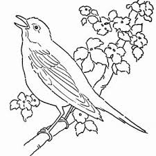 Free Printable Bird Nest Coloring Pages Archives Fundinghuntco