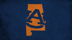 This system can send appointment reminder and waiting list notifications via text message, but only if a cell phone number and carrier is entered by a client. Best 48 Auburn Wallpaper On Hipwallpaper Auburn Football Wallpaper Auburn Wallpaper And Auburn Tigers Wallpaper