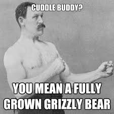 Cuddle buddy? You mean a fully grown grizzly bear - Misc - quickmeme via Relatably.com