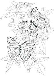 Flower Coloring Sheets Printable Coloring Book Pages Flowers