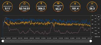 Analysis Of Real World Marathon Power Meter Data From A Top