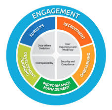 Talent Management System Our Difference Acendre