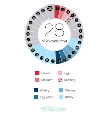 Cervical Fluid Chart Hormone Changes Fertility Signs