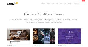 Drag Drop Wordpress Themes By Themify Png